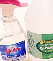 The Benefits of Squash and Vinegar